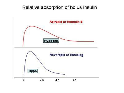 Bolus insulin action profiles